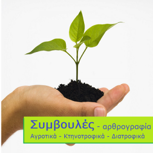 Plant_Care